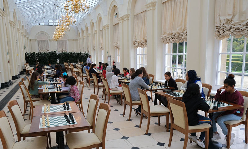 Blenheim Chess 2019 (324).JPG