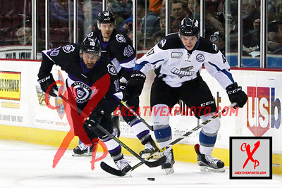 Reading vs. Steelheads 10/26/2016