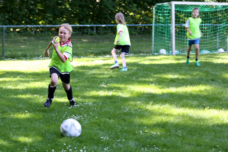 hsv_fussballschule-526_48048039692_o.jpg