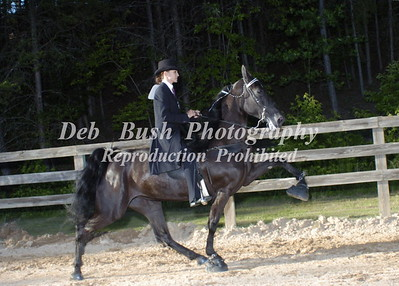 CLASS 19  - 4 YR OLD AM  SPECIALTY