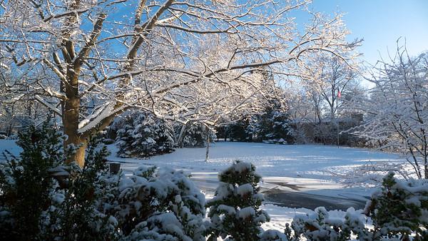 First Snowfall 2012