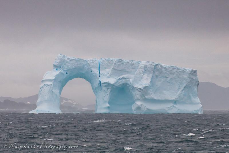 Antarctic-71