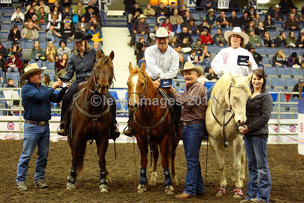 Team Penning Awards
