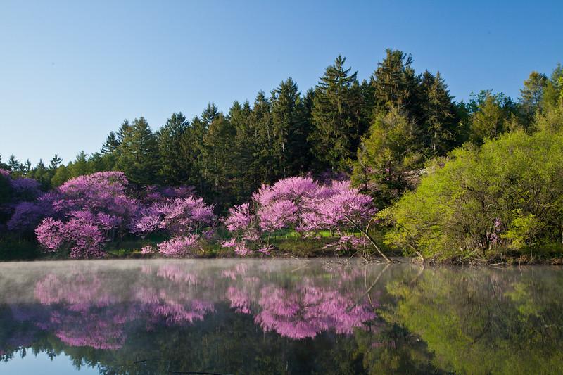 Spring13-0088.jpg