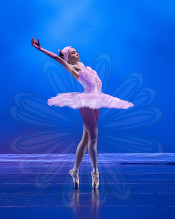 Act 1- Dying Swan |  Graduate (Jessica Dieguez)