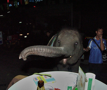 Old Thailand Pictures #2