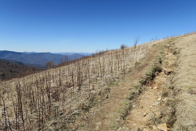 Art Loeb Spur Trail