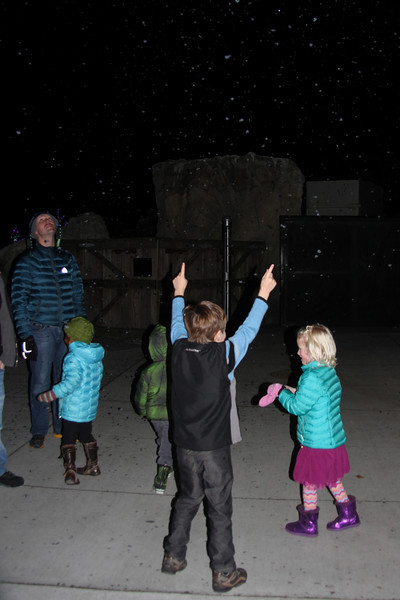 Woodland Park Zoo's Wildlights. Falling snow made out of soap suds!