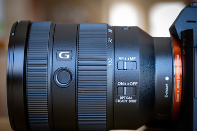Sony FE 24-105mm f/4 G Lens Gallery