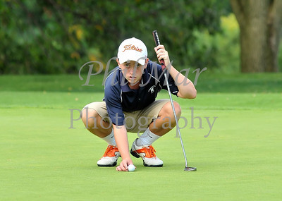 Wyomissing Golf