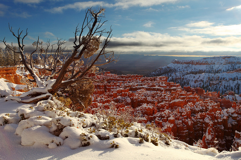 Rim Trail in Winter Bryce Canyon National Park Utah