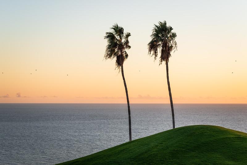 Golf Adeje_20191013_9146.jpg