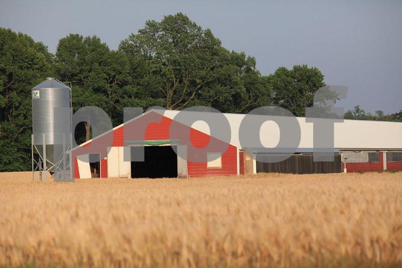 "poultry farm, ""rural Maryland"", Denton"