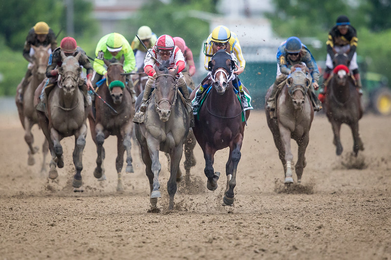 Cloud Computing (Maclean's Music) wins The Preakness Stakes at Pimlico on 5.20.2017. Javier Castellano up, Chad Brown trainer, Klaravich Stables and William Lawrence owners.