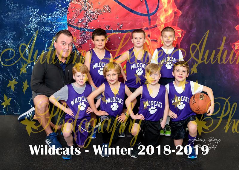 20190210 - #2 1B Wildcats