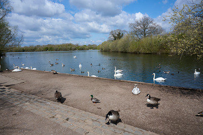Dinton Country Park with Jaimie April 2021