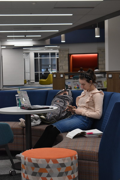 Student utilizing Shake Learning Resource Center.jpeg