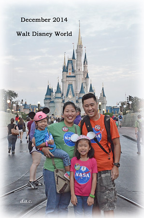 December 20-29, 2014 - Disney and Christmas in Florida