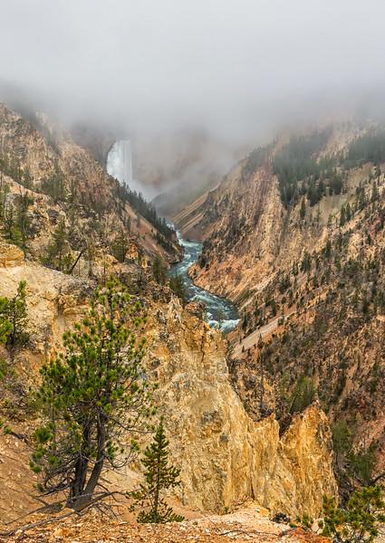 Fog at the Falls