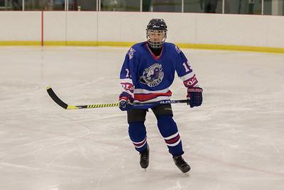 Cloverdale hockey