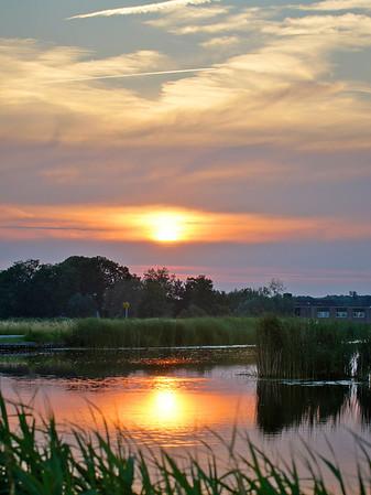 Landscapes Summer / Landschappen zomer