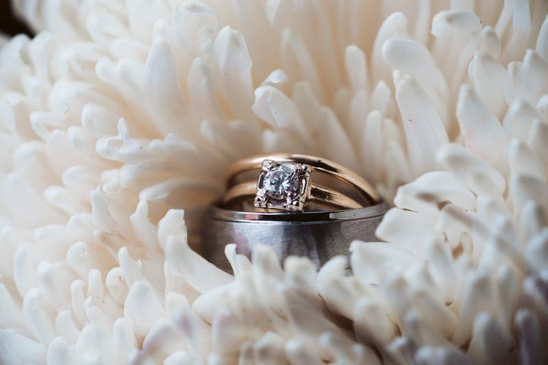 Cox Wedding-570.jpg