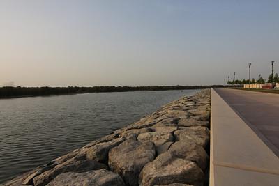 2013_07_18, Eastern Mangroves