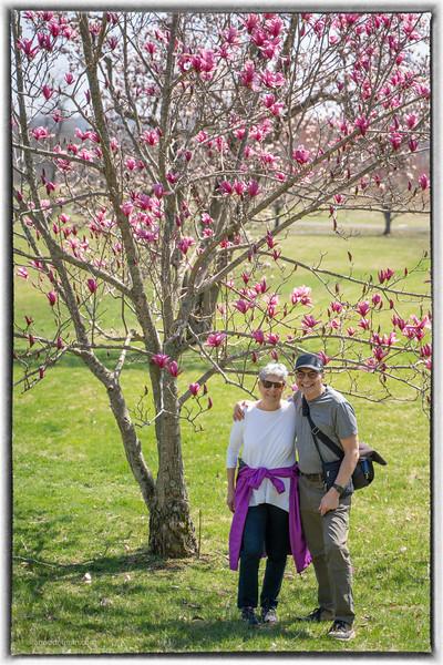 Spring in Leesburg Virginia