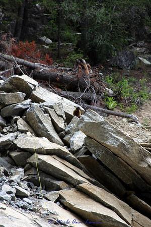 Hike to Sweathouse Falls in June