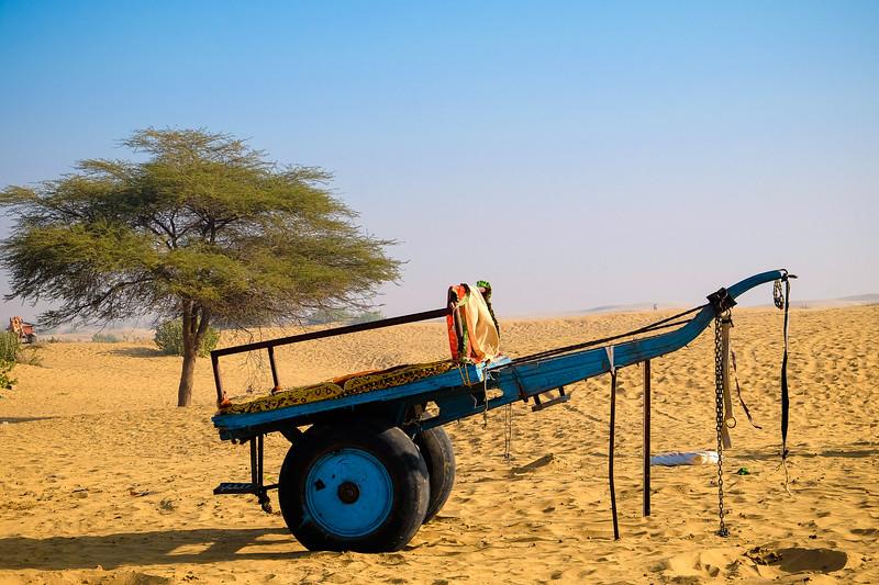 Rajasthan (1 of 1).jpg