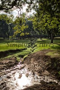 Banita Creek  (10)