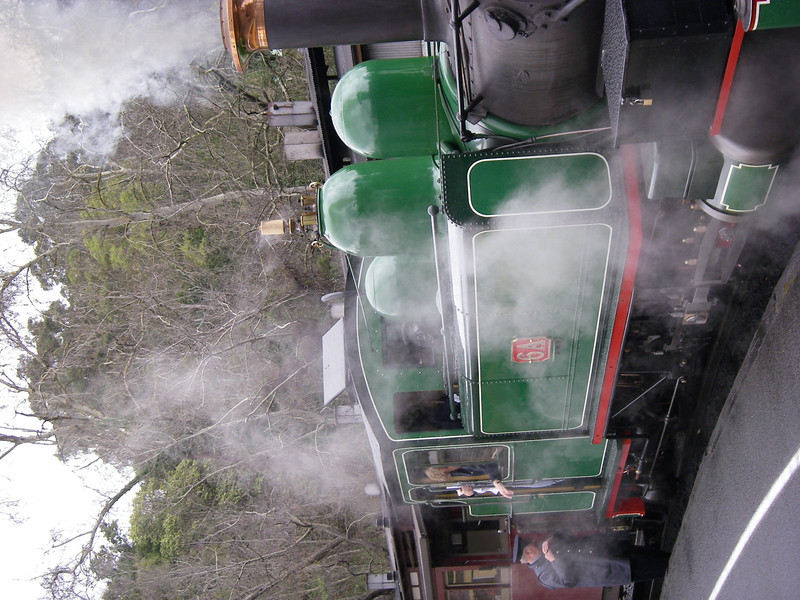 Puffing Billy and Phillip Island 022.JPG