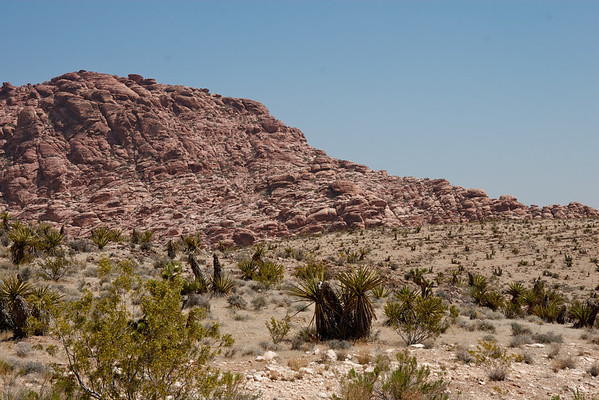 Red Rock Canyon, Mojave Desert