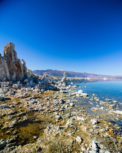 Mono Lake, CA Collection