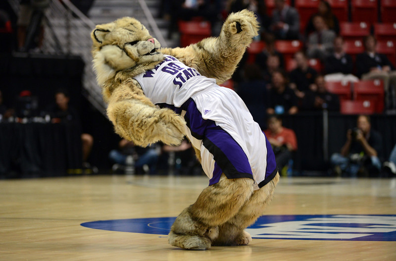 . The Weber State Wildcats mascot cheers on his team during their game against the Arizona Wildcats in the second round of the 2014 NCAA Men\'s Basketball Tournament at Viejas Arena on March 21, 2014 in San Diego, California.  (Photo by Donald Miralle/Getty Images)