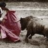 Bullfighter bringing the bull towards the horse
