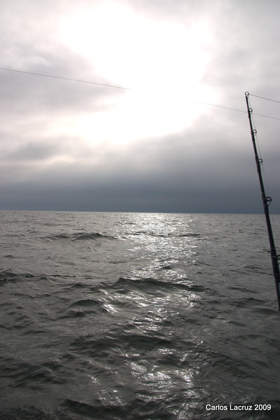 Lorton Fishing Trip-18.jpg
