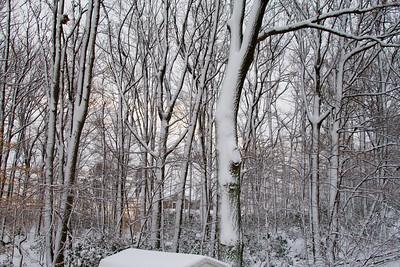 january 27 2011