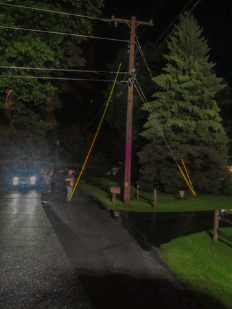 8-21-11 Tree On Wires, Aqueduct Road