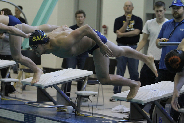 Saline Girls Swim and Dive