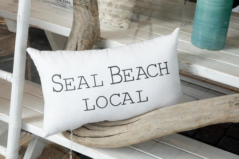 seal beach-036.jpg