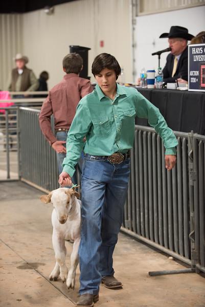 Hays County Show-0472.jpg