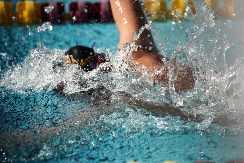 181111 CMS vs Chapman Swimming Diving-635.jpg