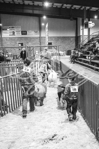 Around the Barns