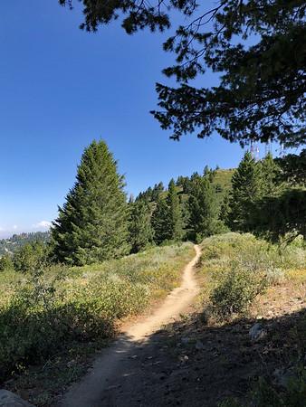 Bogus Mountain Recreation Area