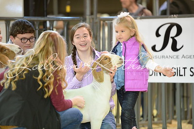 Lamb & Goat Future Exhibitors