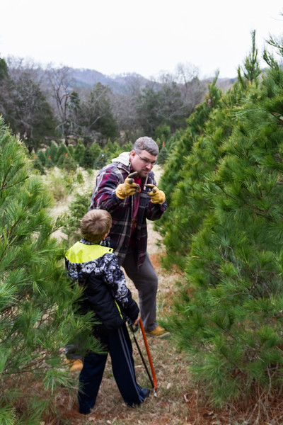 2016-12-03 - Christmas Tree Hunt