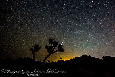 Geminid Meteor Shower at Joshua Tree