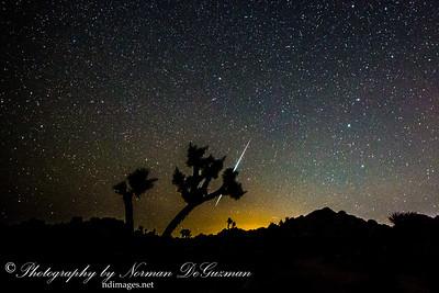 Geminid Meteor Shower at Joshua Tree