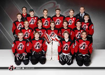Fargo Angels Hockey